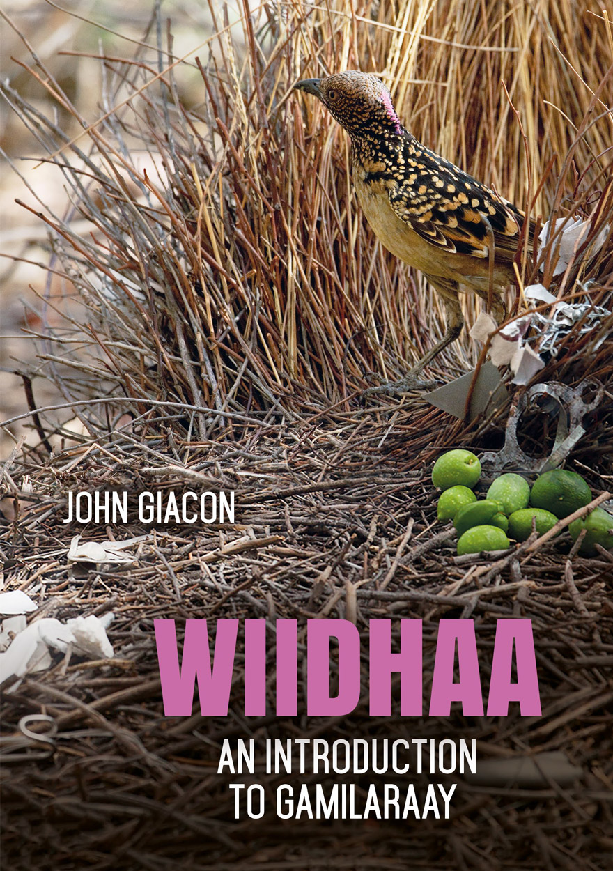 Wiidhaa